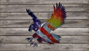 Colored Metal Barn Board Eagle