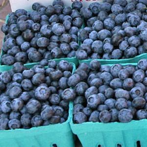 Blueberries for Sale at Pepin Country Stop