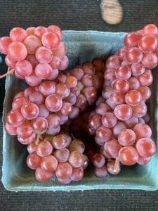 Champagne Grapes for Sale at Pepin Country Stop