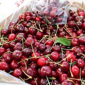 Farmer's Market Ripe Cherries